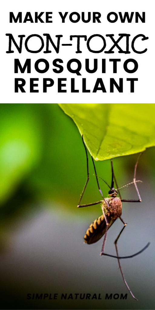 Make your own nontoxic mosquito repellant spray